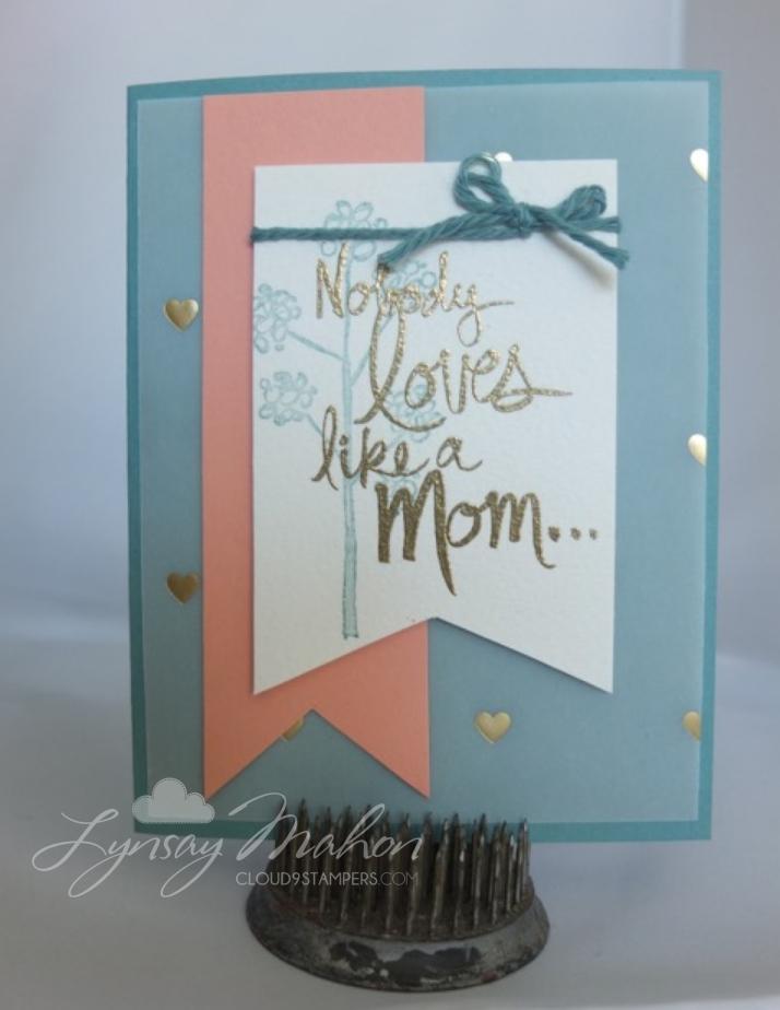 Nobody Loves Like a Mom