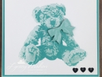 baby bear-001